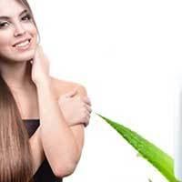 6 рецептов масок для волос с алоэ: тонкости приготовления в домашних условиях