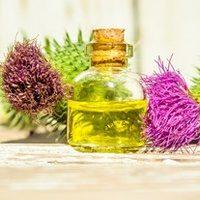 7 популярных масок для волос с репейным маслом – как правильно делать и использовать